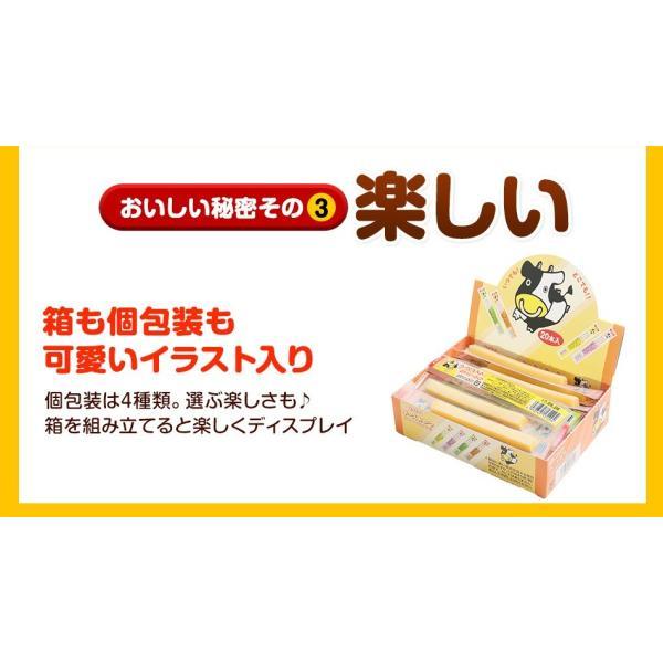 珍味 チーズおやつロング 送料無料 40本入り おやつ お菓子 チーズ ちーず カマンベール メール便 ohgiya-f 05
