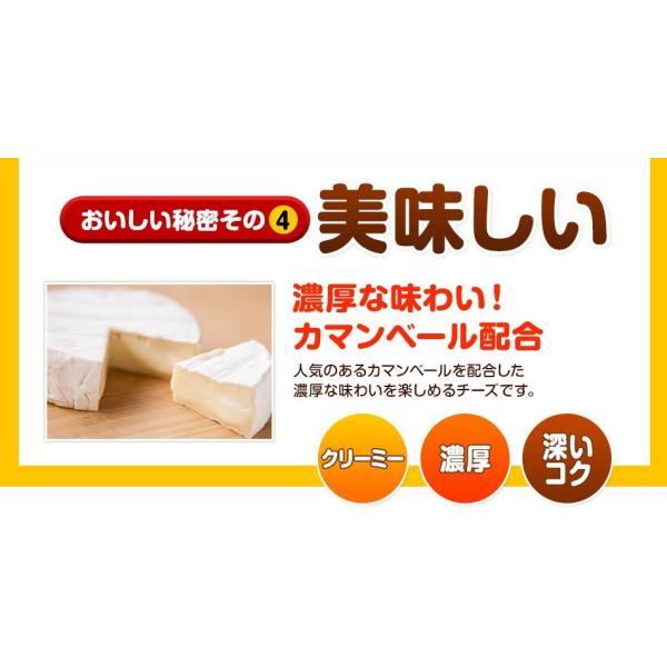 珍味 チーズおやつロング 送料無料 40本入り おやつ お菓子 チーズ ちーず カマンベール メール便 ohgiya-f 06