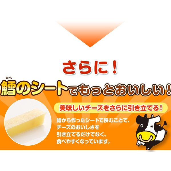珍味 チーズおやつロング 送料無料 40本入り おやつ お菓子 チーズ ちーず カマンベール メール便 ohgiya-f 07