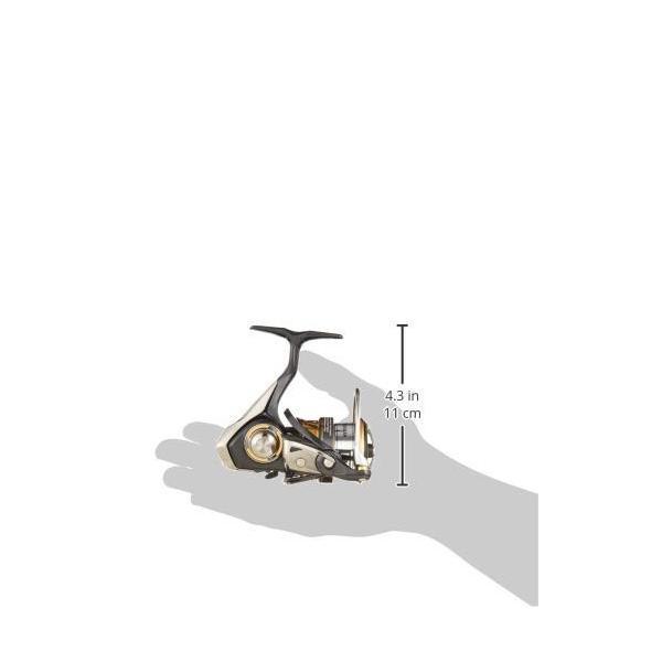 ダイワ(DAIWA) リール レガリス LT2500S-XH 釣り 滑らか回転|ohmybox|04