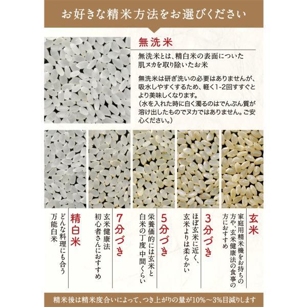 お米5kg コシヒカリ  富山県産 1等米(平成29年産) こしひかり|ohnoshokuryou-shop|05