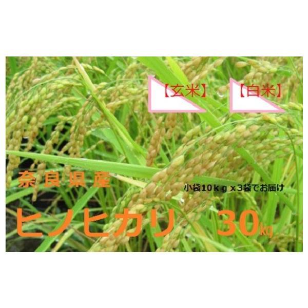 新米 お米30kgひのひかり送料無料(玄米)(白米)30年度産 奈良県産ヒノヒカリ玄米から精米選択可能|ohnoya-netshop|02