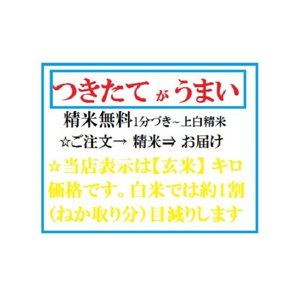 新米 お米30kgひのひかり送料無料(玄米)(白米)30年度産 奈良県産ヒノヒカリ玄米から精米選択可能|ohnoya-netshop|04