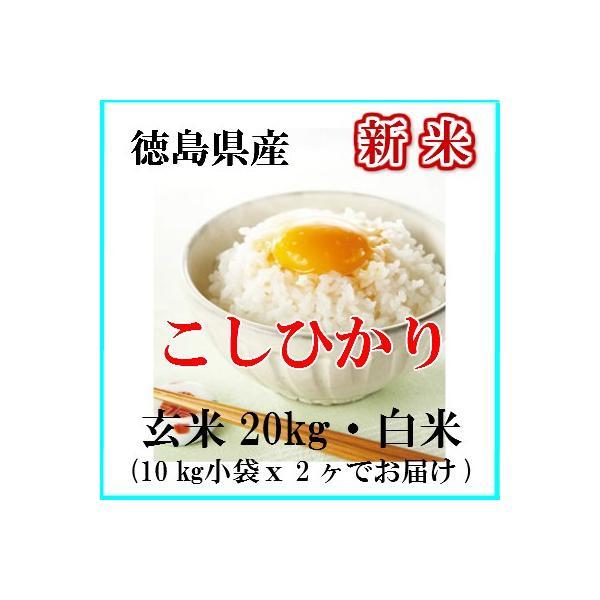 新米 令和3年産 お米 20kg こしひかり 玄米 白米 送料無料 新米 徳島県産 コメ 阿波 こしひかり 玄米 から 精米 選択可能