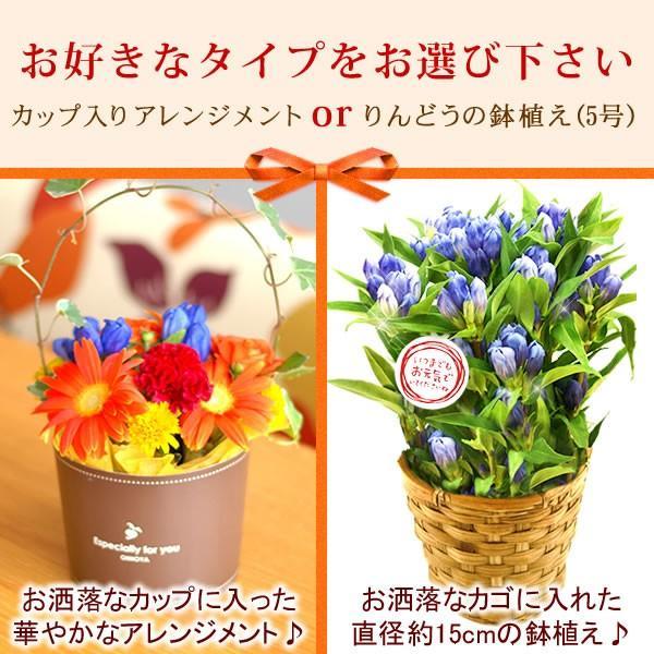 敬老の日 プレゼント 花 お菓子 グルメ  鉢花 生花 アレンジメント oimoya 02