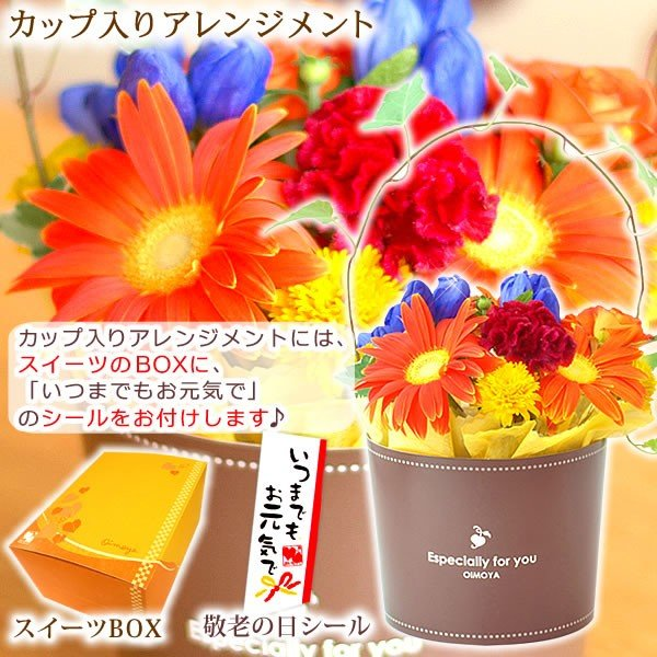 敬老の日 プレゼント 花 お菓子 グルメ  鉢花 生花 アレンジメント oimoya 03