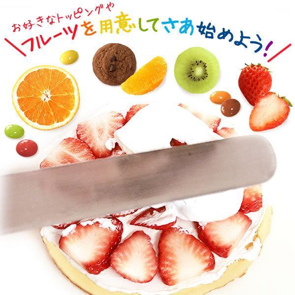 手作り ケーキ スイーツ デコレーション キット ショートケーキ|oimoya|05