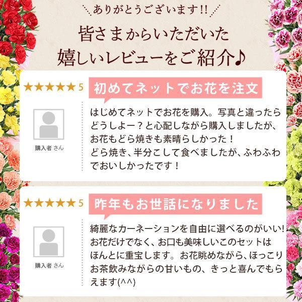 母の日 ギフト 花 母の日 プレゼント カーネーション 鉢植え 花鉢 お菓子 スイーツ 2020 ギフトランキング 5号鉢 oimoya 17