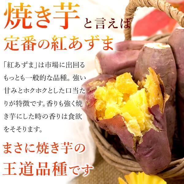 バレンタインチョコ2018 義理 チョコ以外 プレゼント おもしろチョコ ともチョコ oimoya 04