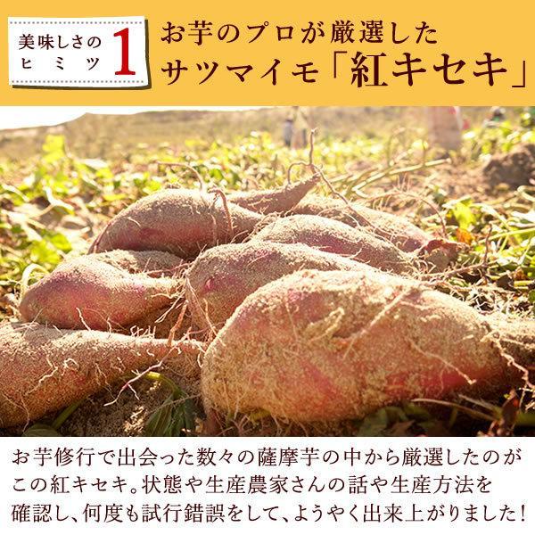 二代目干し芋(ほしいも)   国内産さつまいも 国産干しいも 半生 150g oimoya 07
