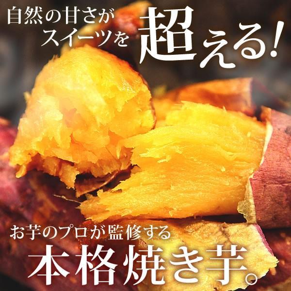 紅はるか焼き芋 安納芋より人気 焼きいも 500g さつまいも スイーツ|oimoya|06