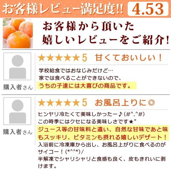 冷凍みかん 三ヶ日みかん 静岡産 ミカン フルーツ シャーベット  4個|oimoya|03