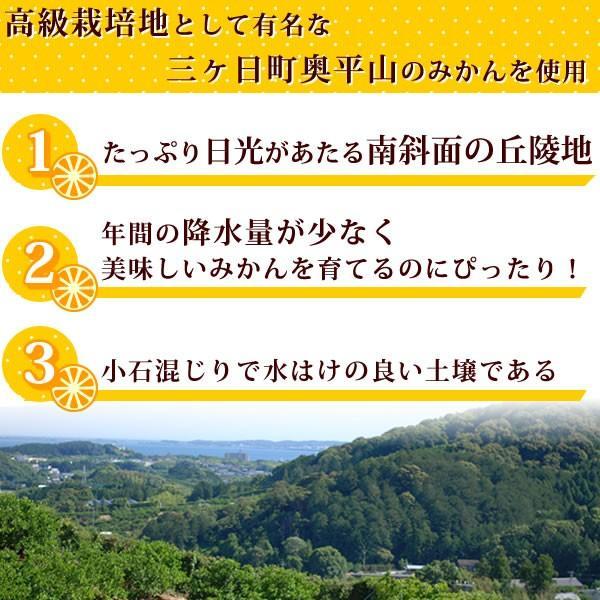 冷凍みかん 三ヶ日みかん 静岡産 ミカン フルーツ シャーベット  4個|oimoya|04