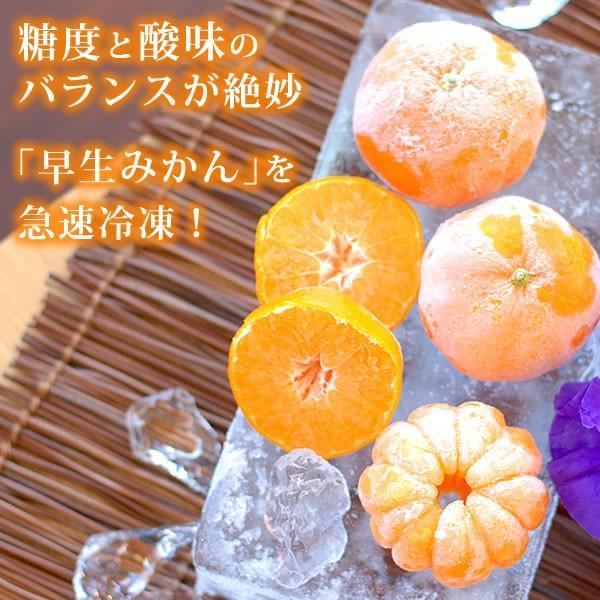 冷凍みかん 三ヶ日みかん 静岡産 ミカン フルーツ シャーベット  4個|oimoya|05