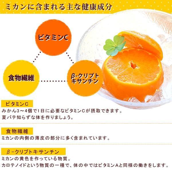 冷凍みかん 三ヶ日みかん 静岡産 ミカン フルーツ シャーベット  4個|oimoya|06