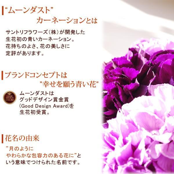 母の日 花 ギフト 2019 mothersday スイーツ カーネーション アレンジメント|oimoya|05
