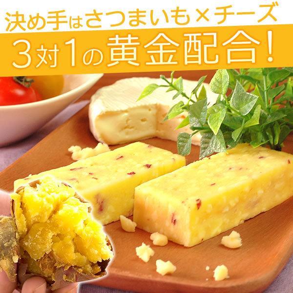 チーズ芋ようかん さつまいも スイーツ お菓子 ギフト プレゼント 誕生日 お祝い 5本|oimoya|03