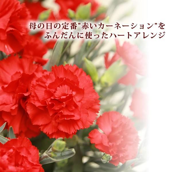 母の日ギフト ランキング プレゼント 2018 花 カーネーション アレンジメント スイーツセット 赤|oimoya|02