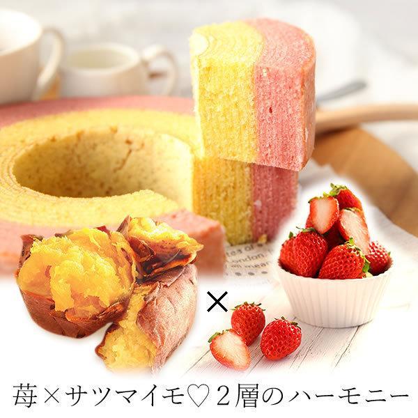敬老の日ギフト 2019 プレゼント 胡蝶蘭 スイーツ 洋菓子 花 oimoya 13
