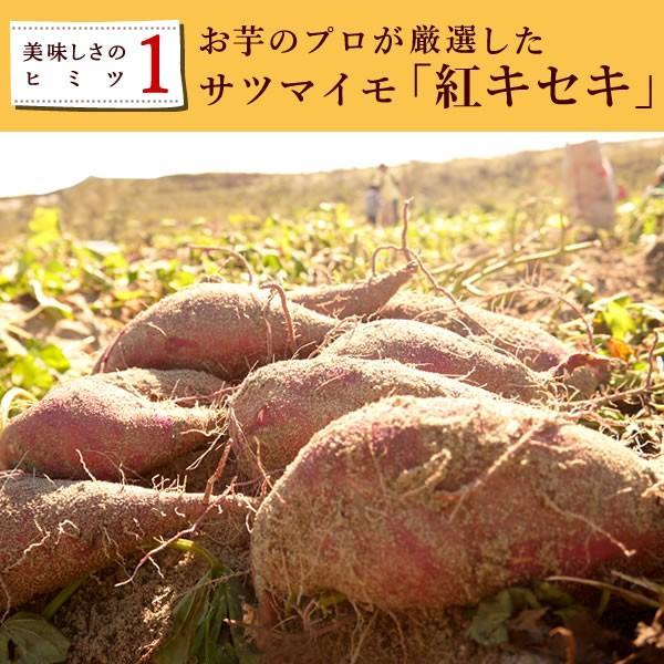 おいもや干し芋 名物ほしいも 国産和菓子 二代目干しいも 150g oimoya 06
