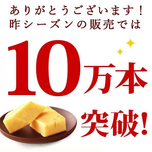 母の日 ギフト プレゼント お菓子 誕生日 ギフト 和菓子 ようかん スイーツ 10本|oimoya|02