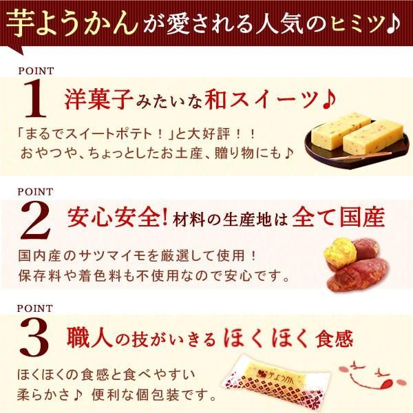 母の日 ギフト プレゼント お菓子 誕生日 ギフト 和菓子 ようかん スイーツ 10本|oimoya|03
