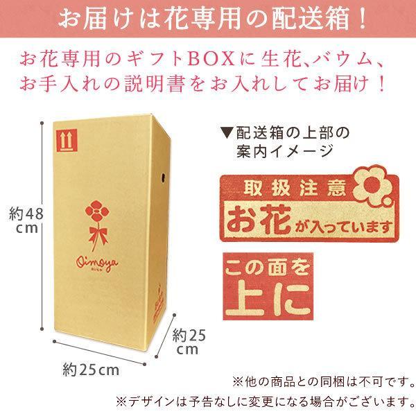 母の日 ギフト 花 母の日 プレゼント カーネーション 鉢植え 花鉢 花とスイーツ 2020 ギフトランキング お菓子|oimoya|12