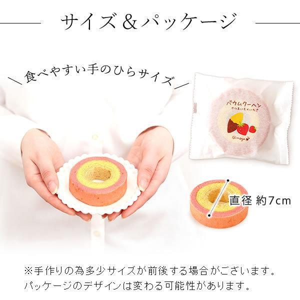 母の日 ギフト 花 母の日 プレゼント カーネーション 鉢植え 花鉢 花とスイーツ 2020 ギフトランキング お菓子|oimoya|15