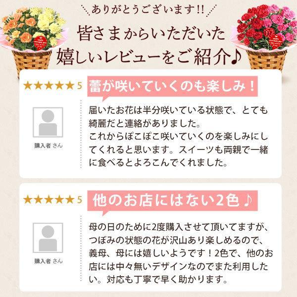 母の日 ギフト 花 母の日 プレゼント カーネーション 鉢植え 花鉢 花とスイーツ 2020 ギフトランキング お菓子|oimoya|16