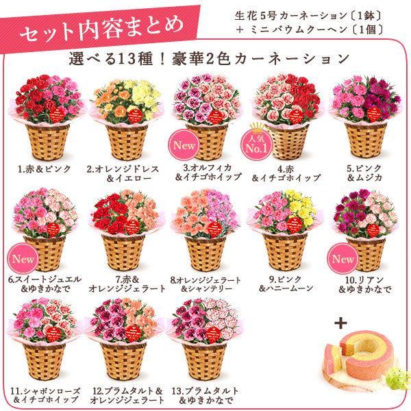 母の日 花 ギフト 母の日プレゼント スイーツ 2019 mothersday カーネーション 鉢植え お菓子|oimoya|03