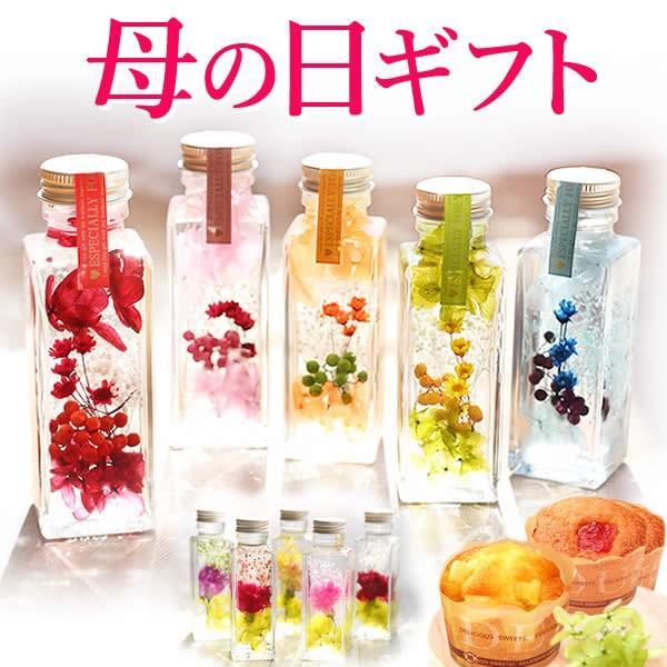 ギフト プレゼント 花 ハーバリウム スイーツ フラワー 植物標本|oimoya