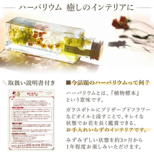 ギフト プレゼント 花 ハーバリウム スイーツ フラワー 植物標本|oimoya|02