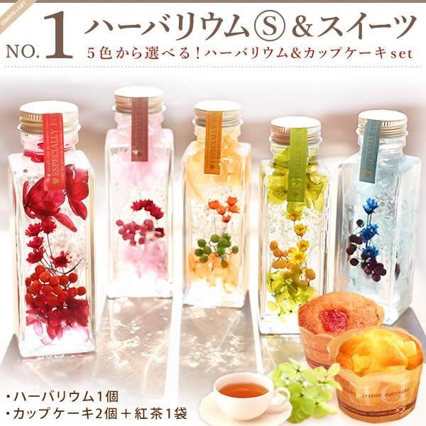 ギフト プレゼント 花 ハーバリウム スイーツ フラワー 植物標本|oimoya|03