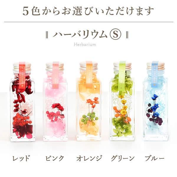 ギフト プレゼント 花 ハーバリウム スイーツ フラワー 植物標本|oimoya|05
