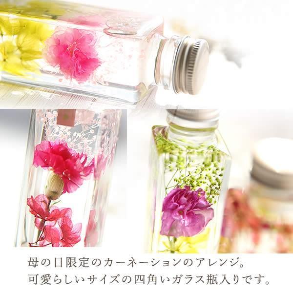 ギフト プレゼント 花 ハーバリウム スイーツ フラワー 植物標本|oimoya|06