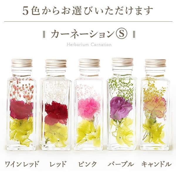 ギフト プレゼント 花 ハーバリウム スイーツ フラワー 植物標本|oimoya|07