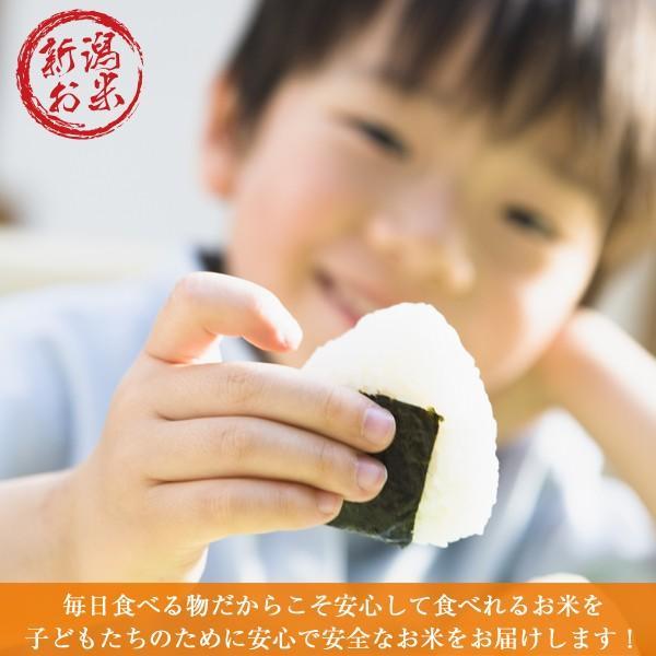 新米 コシヒカリ 10kg (5kgx2袋) 白米 精白米 新潟産 令和元年 送料無料 産地直送|oishii-kome|02