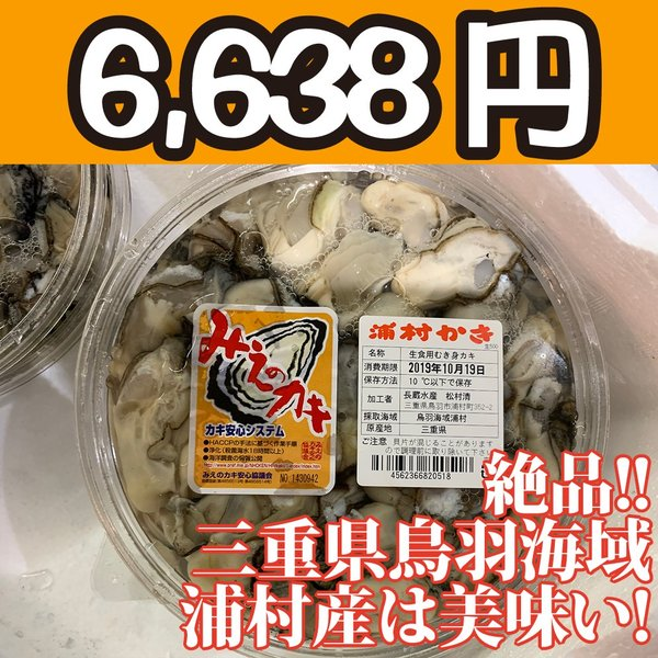 送料無料!【冷凍じゃない!】水に浸かっていないので縮みにくい牡蠣です。三重県鳥羽浦村産の生牡蠣むき身(特大) 500g 円盤パック2個