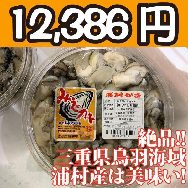 送料無料!【冷凍じゃない!】水に浸かっていないので縮みにくい牡蠣です。三重県鳥羽浦村産の生牡蠣むき身(特大) 500g 円盤パック4個