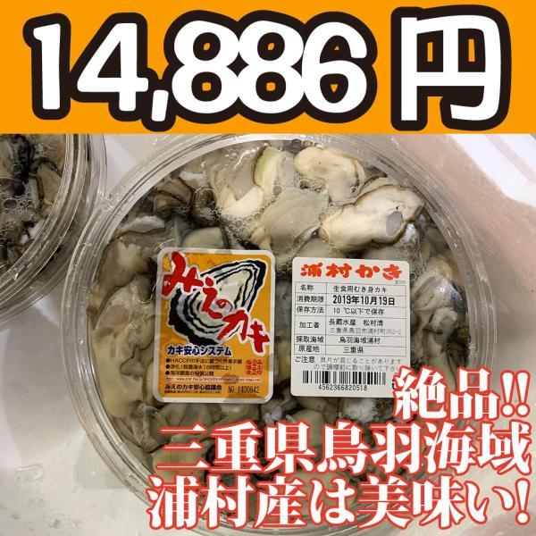 送料無料!【冷凍じゃない!】水に浸かっていないので縮みにくい牡蠣です。三重県鳥羽浦村産の生牡蠣むき身(特大) 500g 円盤パック5個