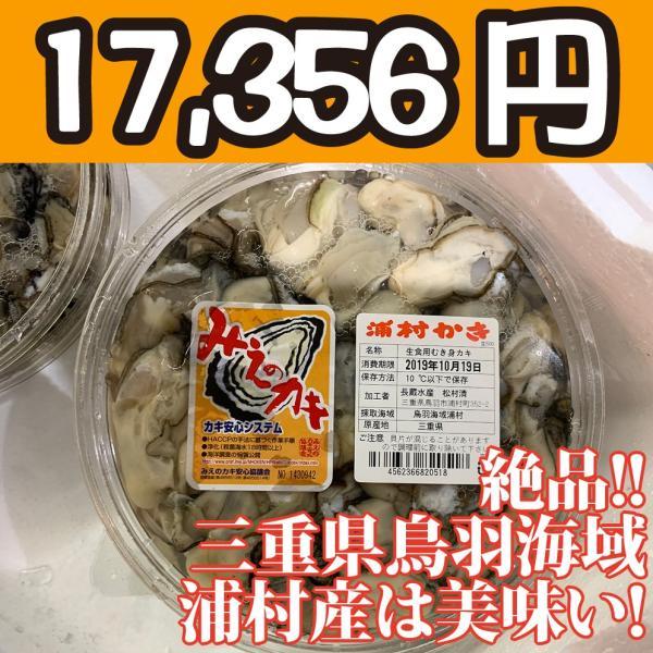 送料無料!【冷凍じゃない!】水に浸かっていないので縮みにくい牡蠣です。三重県鳥羽浦村産の生牡蠣むき身(特大) 500g 円盤パック6個