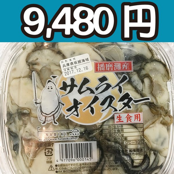 送料無料!【冷凍じゃない!】水に浸かっていないので縮みにくい牡蠣です。兵庫県坂越産の生牡蠣むき身(特大) 500g 円盤パック4個