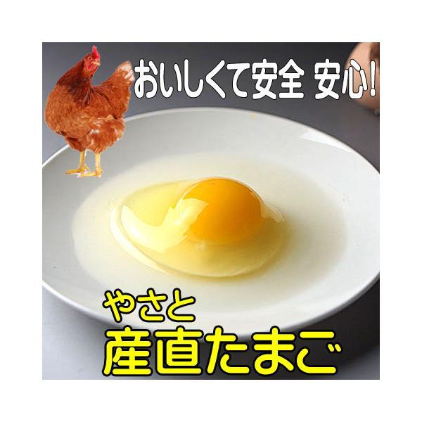卵 タマゴ やさと産直たまご M90個  安全安心 産み立て産地直送 たまご 玉子 茨城  ギフト お取り寄せ