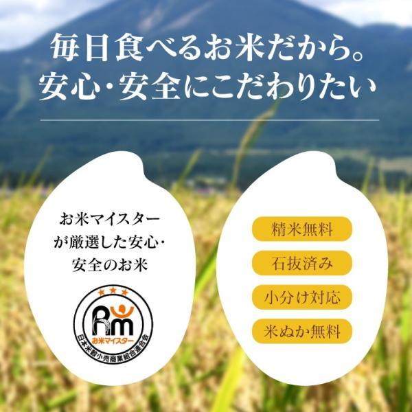 お米 20Kg 福島県産 ひとめぼれ 送料無料 無洗米 精米 令和元年産 一等米 oisiiokomedesu 02