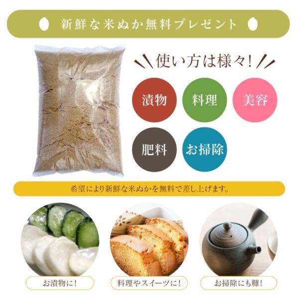 お米 20Kg 福島県産 ひとめぼれ 送料無料 無洗米 精米 令和元年産 一等米 oisiiokomedesu 13