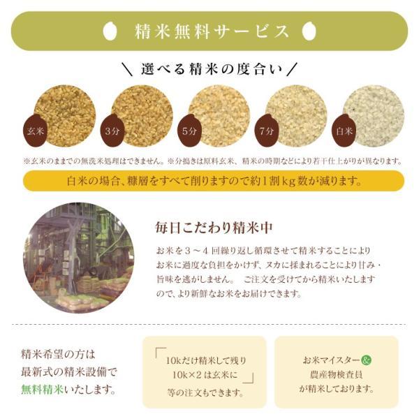 お米 10Kg 福島県産 ひとめぼれ 送料無料 無洗米 精米 令和元年産 一等米|oisiiokomedesu|12