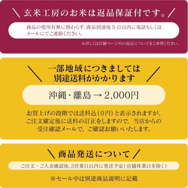 お米 10Kg 福島県産 ひとめぼれ 送料無料 無洗米 精米 令和元年産 一等米|oisiiokomedesu|16