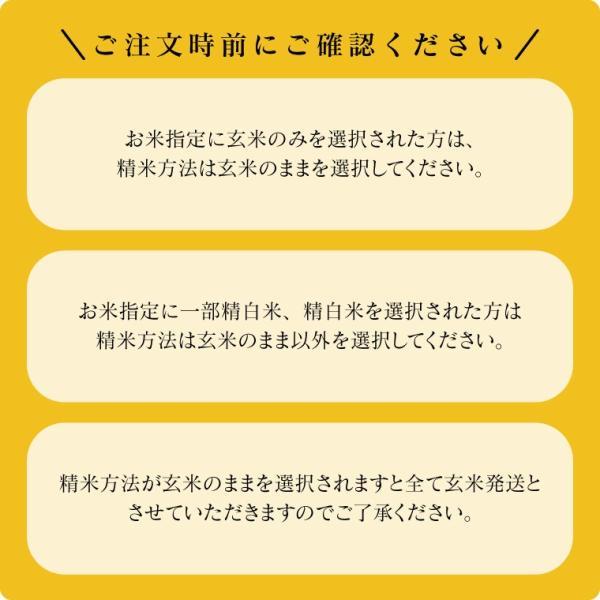 お米 10Kg 福島県産 ひとめぼれ 送料無料 無洗米 精米 令和元年産 一等米|oisiiokomedesu|17