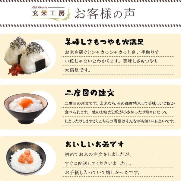 お米 10Kg 福島県産 ひとめぼれ 送料無料 無洗米 精米 令和元年産 一等米|oisiiokomedesu|03
