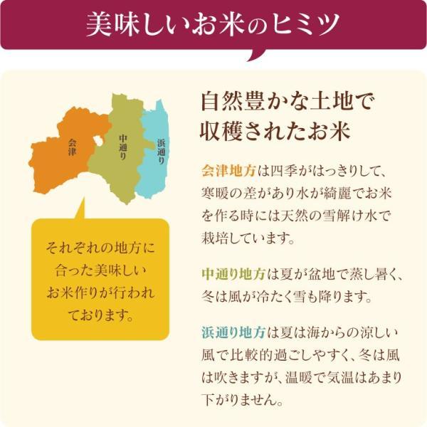 お米 10Kg 福島県産 ひとめぼれ 送料無料 無洗米 精米 令和元年産 一等米|oisiiokomedesu|05